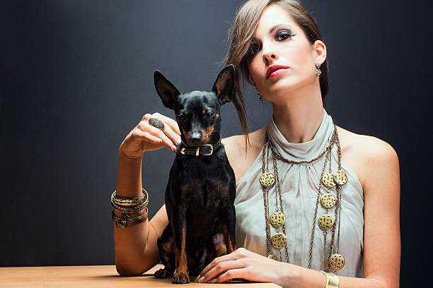 Девушка с собачкой, отель Риксос