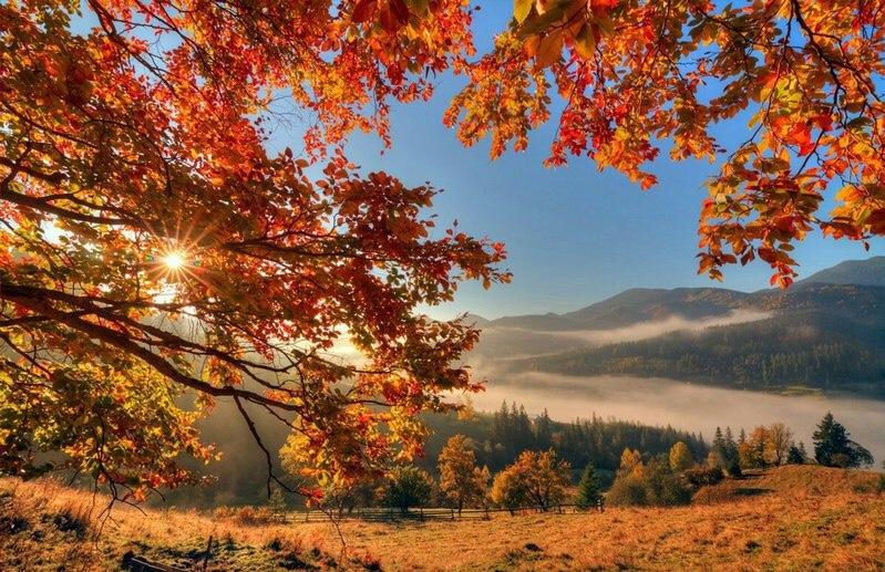 отдых в трускавце осенью