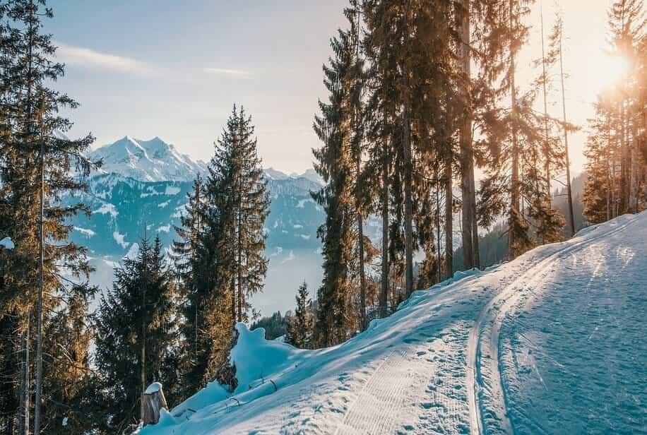 Где отдохнуть зимой в Украине