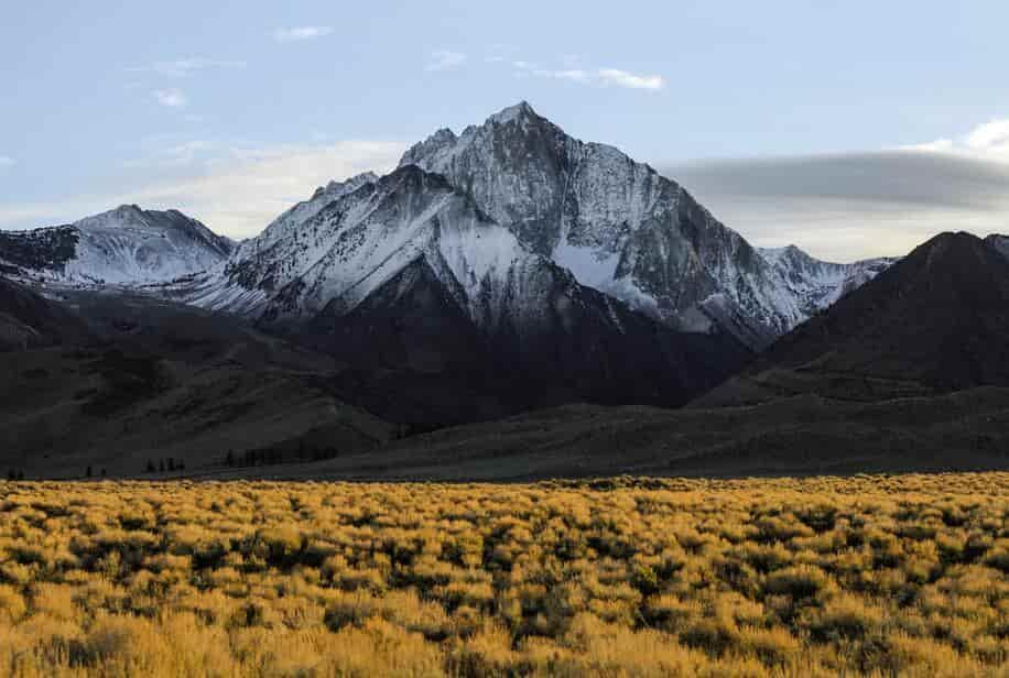 незабываемый отдых среди карпатских гор